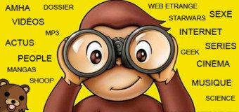 Que souhaitent réellement les visiteurs d'un Blog/Site ?