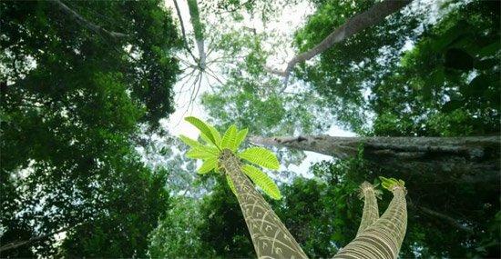 Il était une forêt - Tout pour exceller dans l'art de se tenir debout.