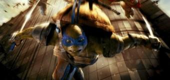Kowabunga, les tortues sont là !