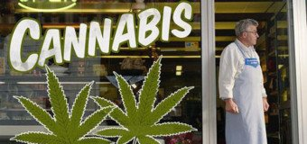 Mon humble avis sur la dépénalisation du cannabis