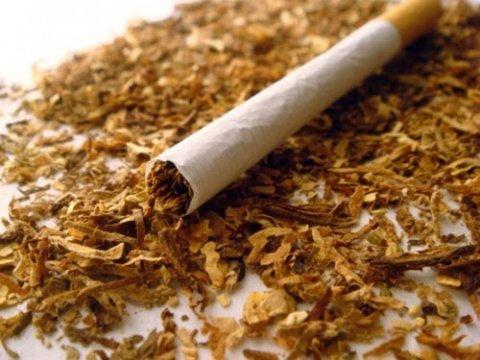 cigarette-tabac-drogue