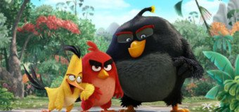 Angry Birds le film à gagner en Blu-ray et DVD