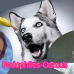 Pédophiles-Garous : modifications trash des règles du jeu Loups-Garous